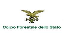 Corso Forestale dello Stato